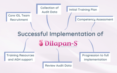 Successful Implementation of Dilapan-S